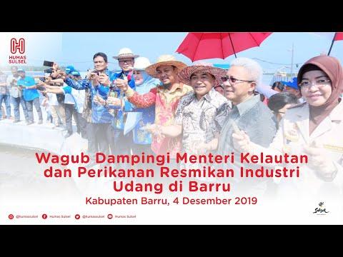 Wagub Dampingi Menteri Kelautan dan Perikanan Resmikan Industri Udang di Barru - 1 Desember 2019