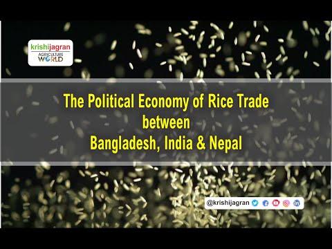 कैसे होगा चावल की खेती में सुधार