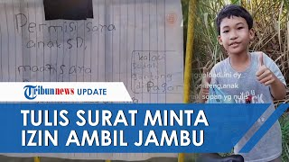 Viral Video Bocah SD Tulis Surat untuk Minta Izin Ambil Jambu Air di Pekarangan Rumah Warga