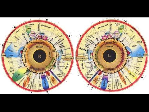 rövid távú látásvesztés oka a férfiak és a nők különbsége