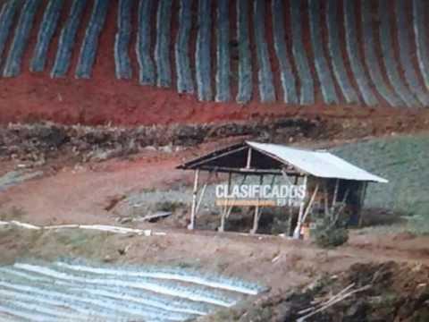 Fincas y Casas Campestres, Venta, Yumbo - $580.000.000