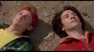 Bill And Ted Are 7 Inches From The Mid Day Sun