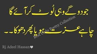 Descargar Mp3 De Life Changing Urdu Quote Gratis Buentemaorg