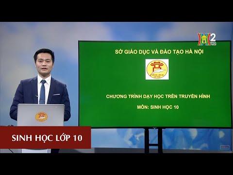 MÔN SINH HỌC - LỚP 10 | BÀI 27 | 13H30 NGÀY 11.04.2020 | HANOITV