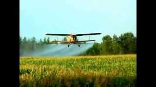 Обработка полей с самолета ан-2 - кукурузник