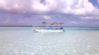 preview picture of video 'Little Cayman Island Glass Bottom Boat Tour, Snorkeling & Water Taxi to Owens Island, Little C Tours'