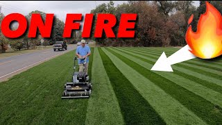 LAWN STRIPES That Will BLIND You! REEL LOW / REEL MOWING