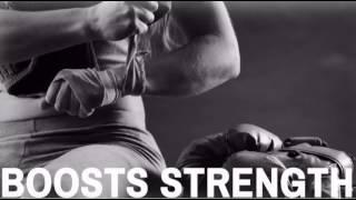 Fairtex Muay Thai Bag Gloves - MAEQD.com