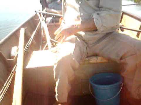 pegando um tucunaré em mosópolis