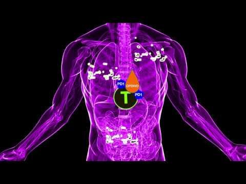 Tes hpv dna adalah, Papilloma az immunitás fokozására