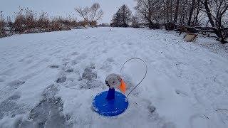 Рыбалка на жерлицы. Ловля щуки в маленькой речке. Зимняя рыбалка 2018.