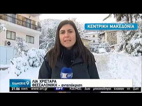 Χιονοπτώσεις κ στην Αττική-Προβλήμ. σε δρόμους- Κλειστά σχολεία λόγω γρίπης και χιονιά|06/02/20|ΕΡΤ