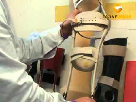 Scoliosis di una spina dorsale del terzo