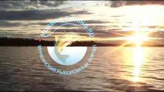 Мурманский рыболовный форум отчеты о рыбалке