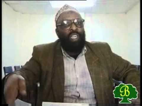 Jaarraa Abbaa Gadaa - Seenaa Qabsoo Bilisummaa Oromiyaa