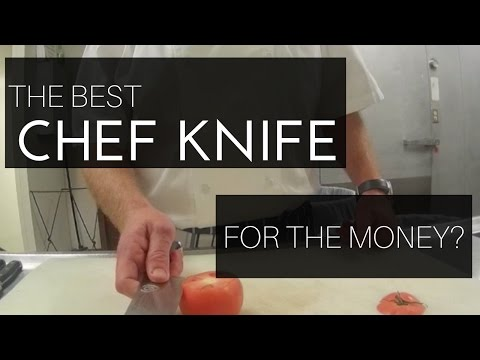 WHAT IS THE BEST CHEF KNIFE?  |  Taking A Look At The Dalstrong Shogun Series Chef Knife