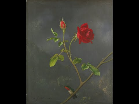 Афанасий Фет - Осенняя роза (18.9.1886)