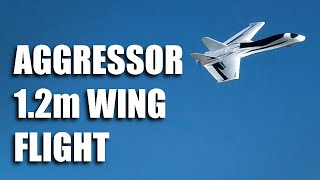 Aggressor 1.2m Swept Forward Wing - Maiden