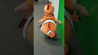Cute tail wiggle Nemo