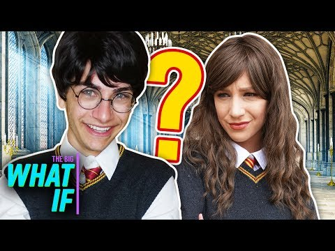 WHAT IF HARRY POTTER...