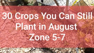 30 Seeds You Can Still Plant in August] Zone 5