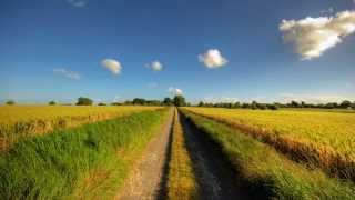 Florida Georgia Line - Country In My Soul with Lyrics (HD)