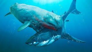 6 Most Dangerous Megalodon Enemies Ever Existed