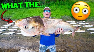 Bowfishing For The UGLIEST Fish In The Water!!