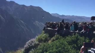 Von Cusco zum Valle Colca und nach Arequipa