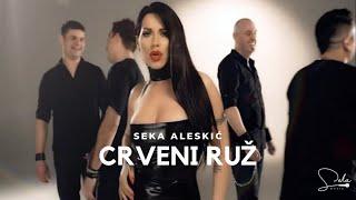 SEKA ALEKSIC - CRVENI RUZ (OFFICIAL VIDEO)