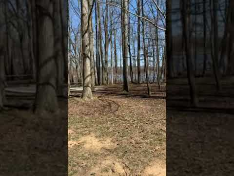 Video taken from our parking pad to show distance between us and 37 in the beginning of video and our view. The sign is the trail head.