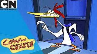Cow and Chicken | Becoming Rich and Famous | Cartoon Network