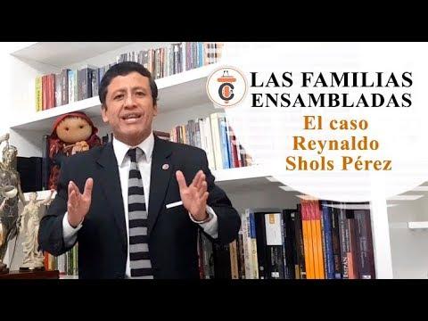 LAS FAMILIAS ENSAMBLADAS: El caso Reynaldo Shols Pérez - Tribuna Constitucional 140 - Guido Aguila Grados