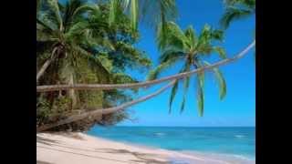 Island In The Sun ( Harry Belafonte)