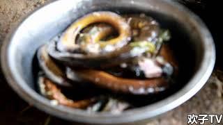 农村小伙在山里插秧饿坏了,水蛇大的黄鳝直接下锅,真过瘾 【欢子TV】