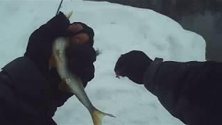 Рыбалка на теплом озере в уфе