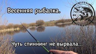 Липки платная рыбалка походный проезд маршрут