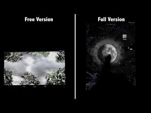 Video of Winter Snowfall Free Wallpaper