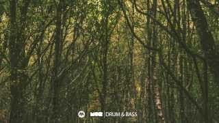 MOR Drum and Bass Guest Mix : LN4 MOR D'n'B Mix