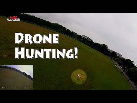 FuriBee Fuuton Drone Hunting! Seeking And Chasing The Buddy's Quad