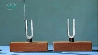 Опыты по физике. Акустический резонанс двух камертонов