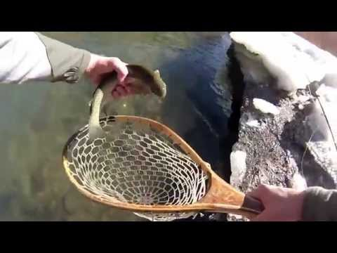 video 0 - Breckenridge Outfitters gallery