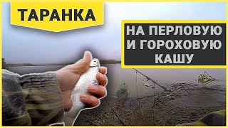 Рыбалка в краснодарском крае канал молочный