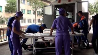 Трое погибло и 9 госпитализировано в результате ДТП в Туркестанской области