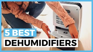 Best Dehumidifiers in 2020 - How to Choose a Dehumidifier to Improve Your Air Quality?