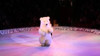 Национальный цирк Украины, супер акробаты и артисты )