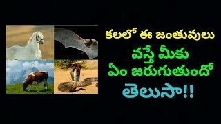 kevin meaning in telugu