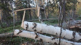 Старинная ловушка на пушнину, краткий обзор. trap for furs,