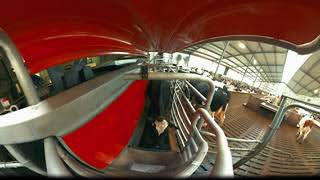 Lely Astronaut A5 - The new milestone in milking (VR - virtual reality experience)