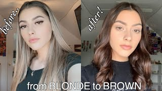 DYING MY BLONDE HAIR BROWN AT HOME!! *hair Transformation*